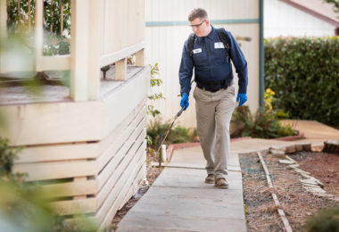 Expect Inexpensive Pest Control Gold Coast Services For You
